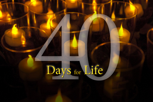 40-days-for-life-multimedia